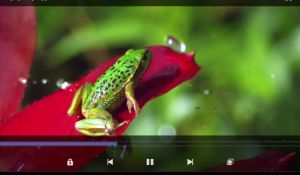 MX Player для телефона