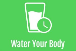 Water Your Body
