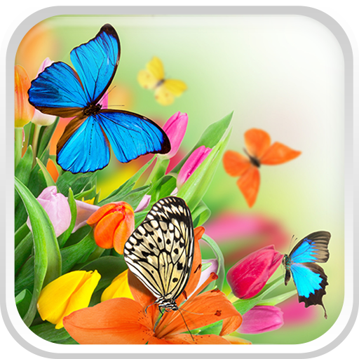 Butterfly Live Wallpaper HQ