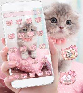 Cute Kitty Pink. Cat Theme Pet