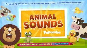 Звуки Животных