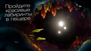 SHINE — путь света